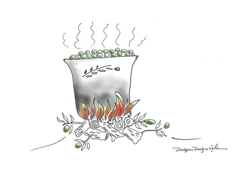 Zeytin Karikatürleri Yarışması 2016 14