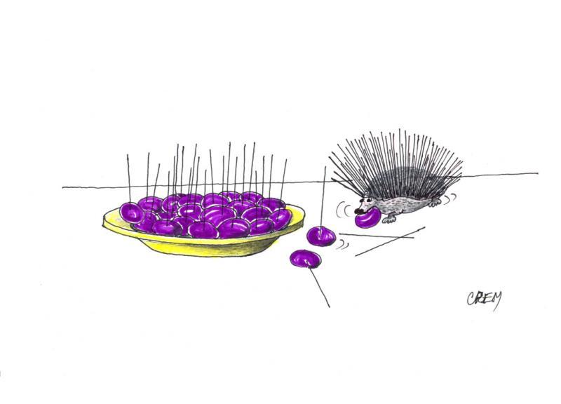 Zeytin Karikatürleri Yarışması 2016 8