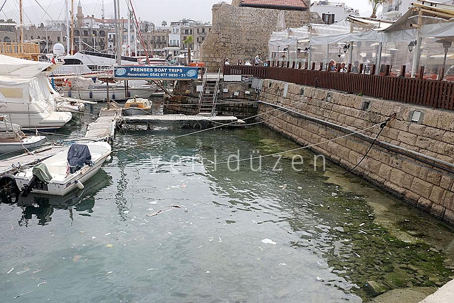 Turistler pis denizi seyrediyor! 1