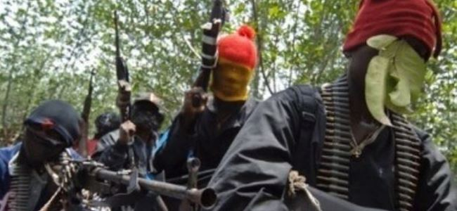 44 Boko Haram üyesi öldürüldü