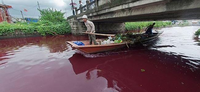 Açıklanamayan olay: Kanlı nehir!