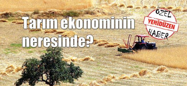 80,4 milyon dolarlık tarıma dayalı ürün ihracatı
