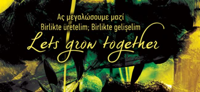 "Ledra Palace'ta ortak ""Zeytin Festivali"""