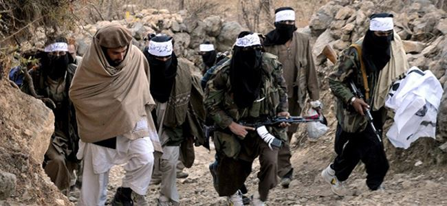 Talibana operasyon: 16 ÖLÜ