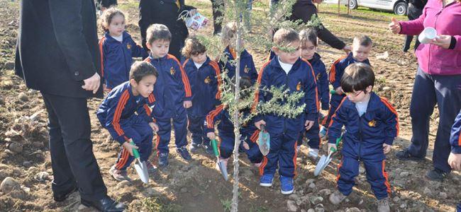 Minikler ağaç dikti
