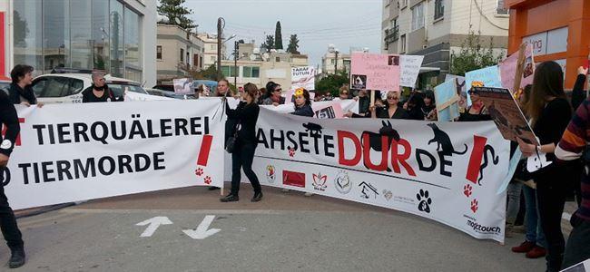 Karpaz'da iki eşeğin öldürülmesi protesto edildi