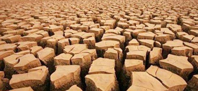 ABD mega kuraklık tehlikesiyle karşı karşıya