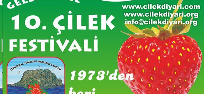 """""""10. Geleneksel Çilek Festivali"""" başlıyor"""