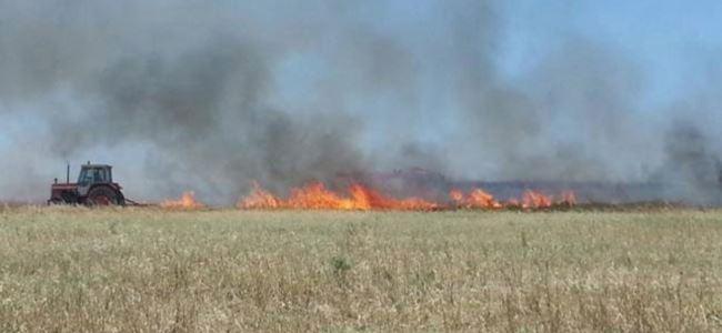 125 dönüm biçilmemiş tahıl yandı