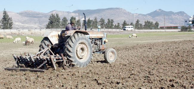 Genel Tarım Sigorta Fonu'nun çoğu ürün desteğine