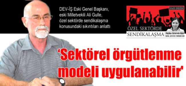 'Sektörel örgütlenme modeli uygulanabilir