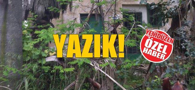 Kantara'da 'kaderine terk edilmiş' turizm!