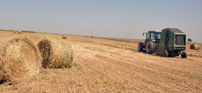 Tarımda faiz destekli kredi