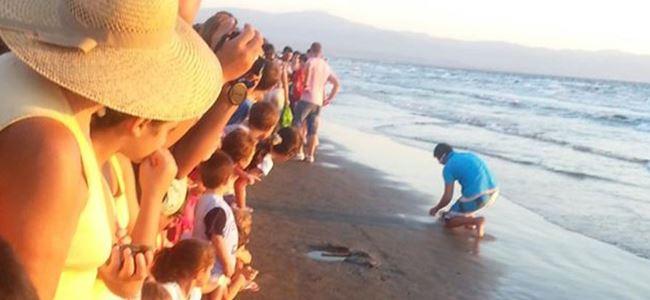 ''Gelin hep birlikte sahil temizliği yapalım, bebek kaplumbağalarımızı suya bırakalım''