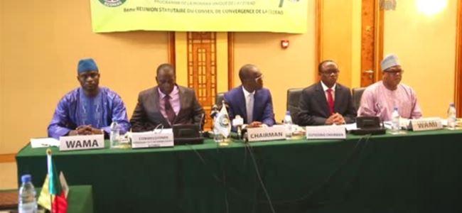 Batı Afrikada ortak para birimi kullanılması...