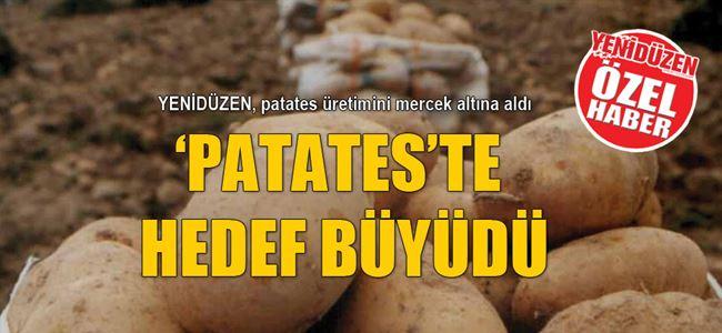 'PATATES'TE HEDEF BÜYÜDÜ
