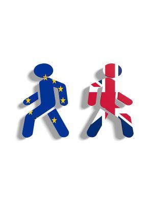 Brexit ve Sol