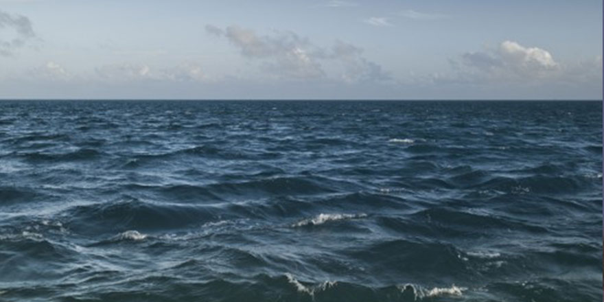 Denize düşerek yaşamını yitirdi!