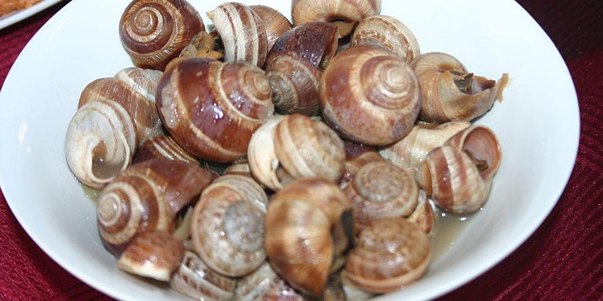 Kıbrıs Mutfağında Garavolli