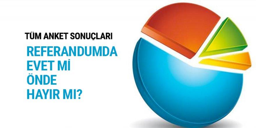 Türkiye referandumu öncesi tüm anketler