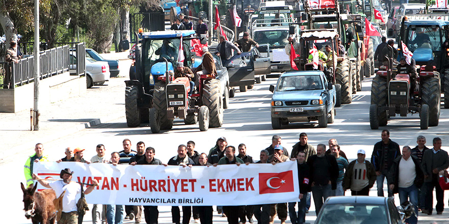 Kıbrıs Türk Hayvan Üreticileri Birliği eylemlerine başlıyor