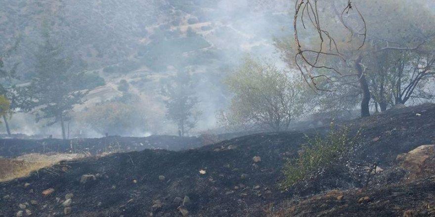 YEŞİLIRMAK'ta yangın. Büyümeden söndürüldü