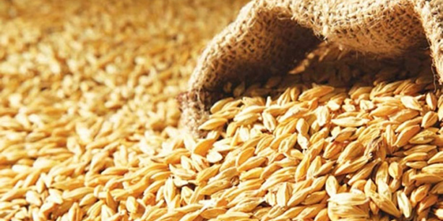 Çiftçilerin ödeyeceği faiz oranları düşürülüyor