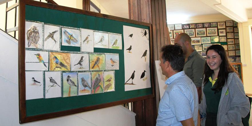 Okul çevresindeki kuşlar kitapta toplandı