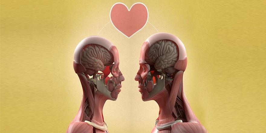 Aşk= Cinsellik-Şefkat-Bağlılık