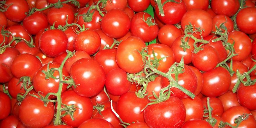 Üzüm ve domatesler imha edildi