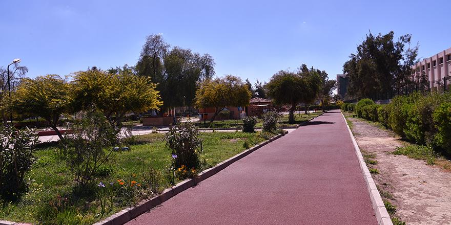 Lefkoşa'da bazı yürüyüş yolları yeniledi