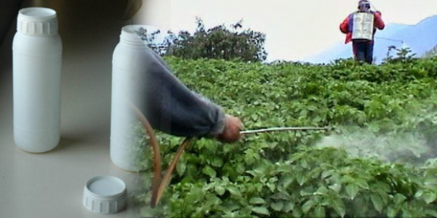 Tatlısu'da tarımsal ilaç deposu mühürlendi