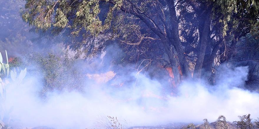 Mağusa'da korkutan yangın