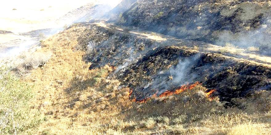 Gürpınar'da yangın  15 dönümlük arazi zarar gördü