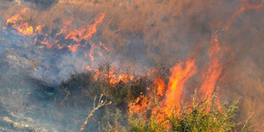 Limasol'da büyük yangın!
