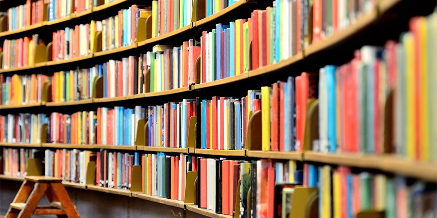 Kütüphaneyi yılanlar bastı