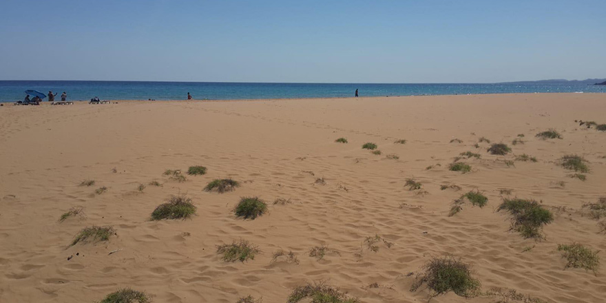 Altınkum sahili temizlendi