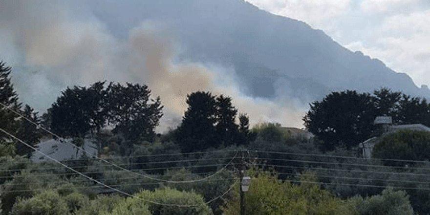 Lapta'da korkutan yangın