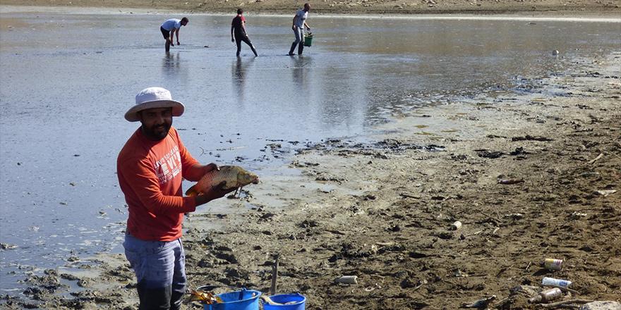 8 bin balık kurtarıldı