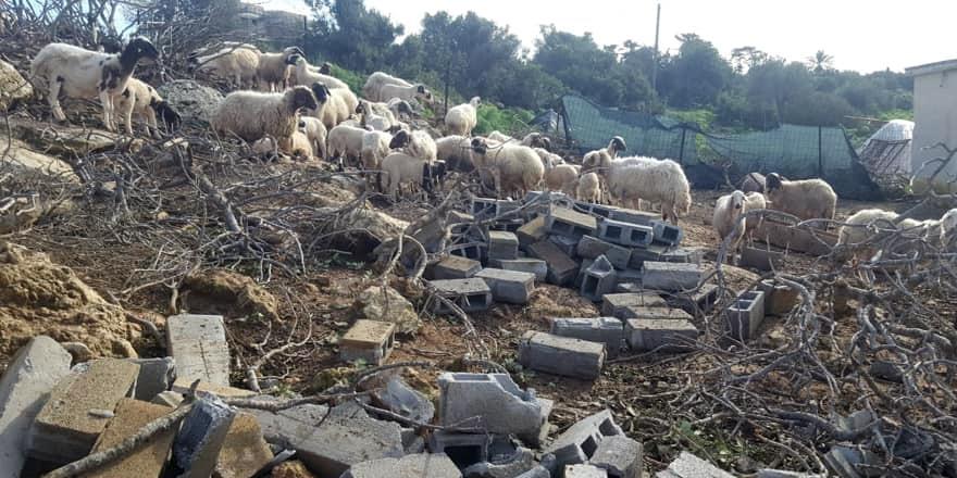 Üretim alanlarındaki zararlar tespit ediliyor