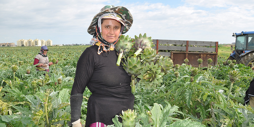 Mevsimlik tarım işçisi; Fatma Kargı