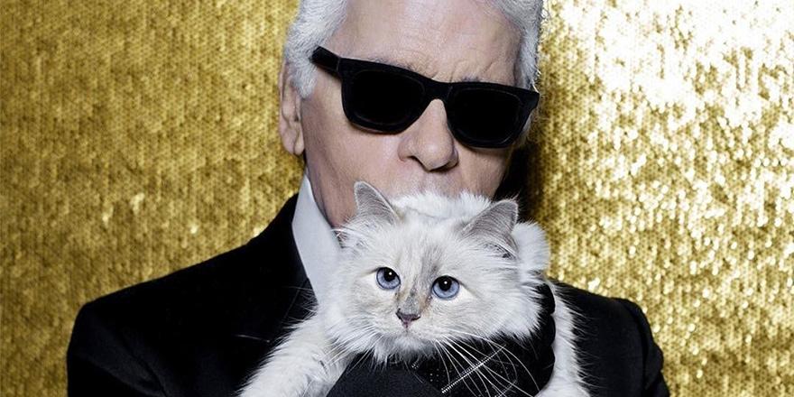 200 milyon Dolar kedisine kalabilir