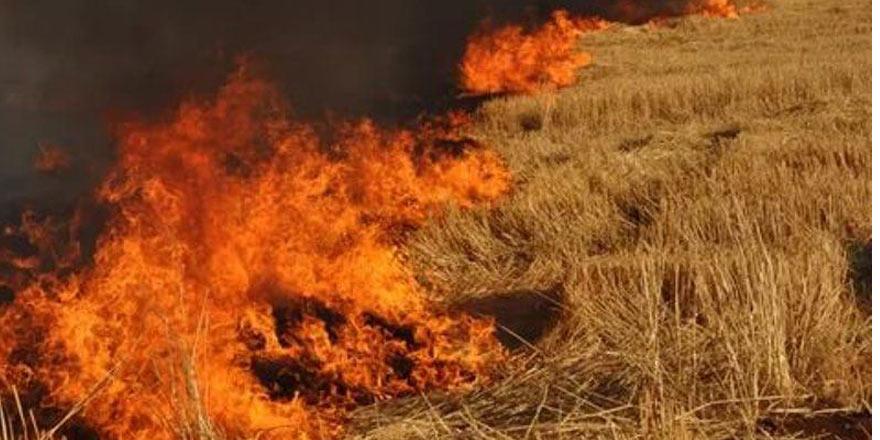 Çınarlı'daki yangına 'yardım' çağrısı
