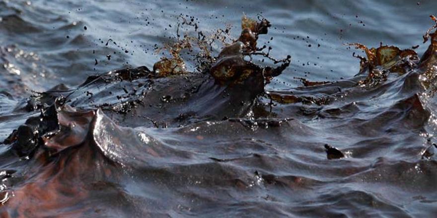 Limasol sahilinde petrol kirliliği