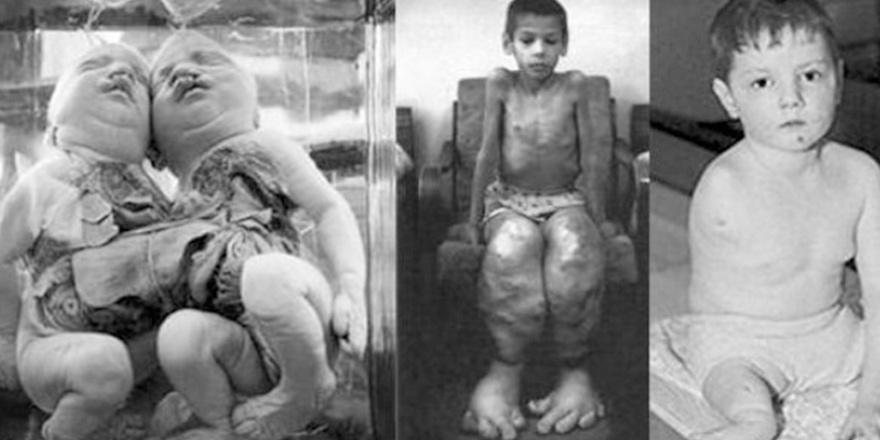 Güç Arzusuna Yenilmek: Çernobil ve Fukuşima'nın düşündürdükleri