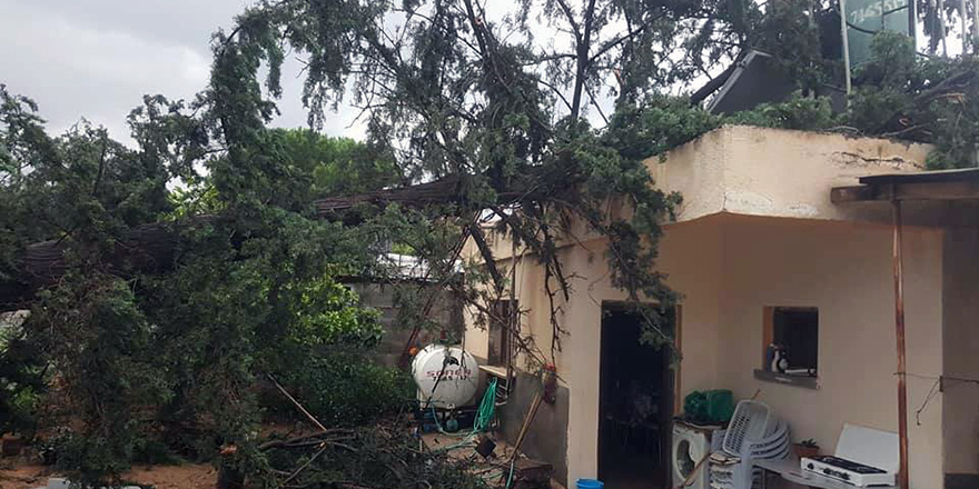 Güzelyurt'ta bir evin üstüne ağaç düştü