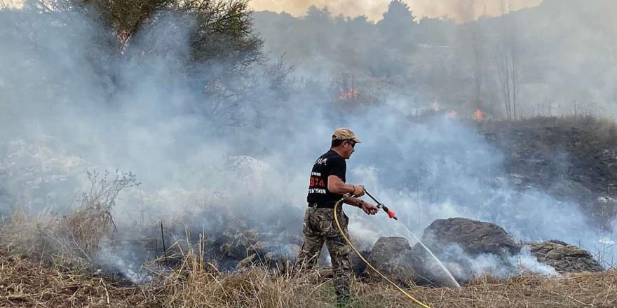 7 yangında 70 hektarlık alan yandı