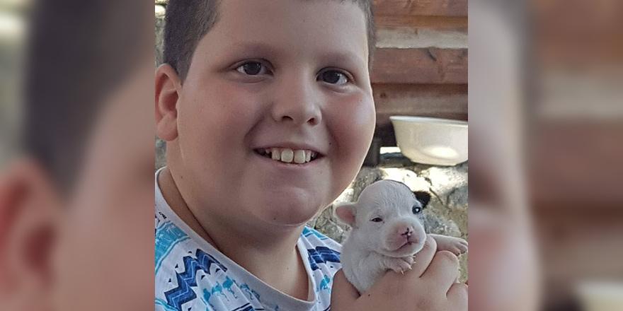 10 yaşındaki Atlas yaşamını yitirdi