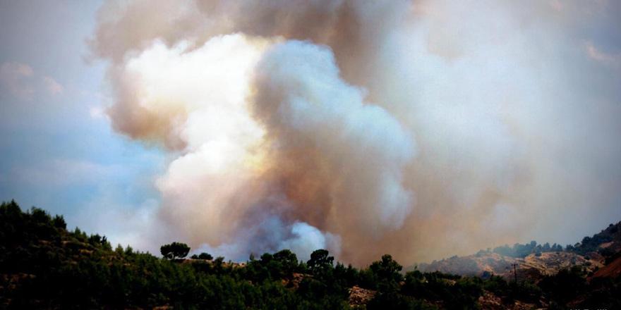 Aplıç geçiş noktası yakınlarında yangın