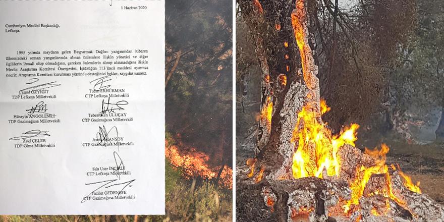 CTP-TDP: 1995'ten itibaren tüm orman yangınları ARAŞTIRILSIN
